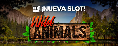 Slot Wild animals